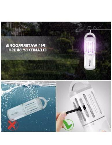Bug Lights, In Electronic Mosquito Killer And UV