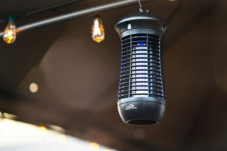 Bug Dusk to Light Ft - Refurbished