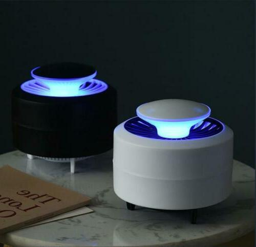 Electric Fly Light Lamp