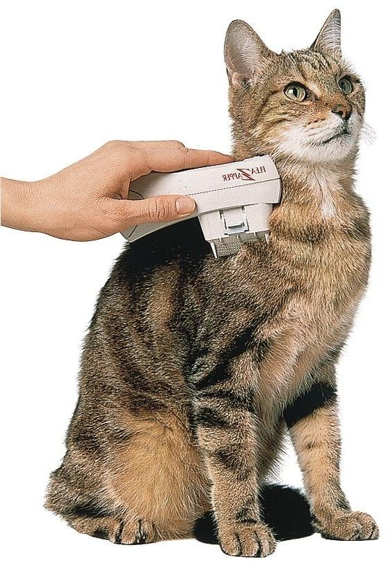 Electronic Cat Zapper New