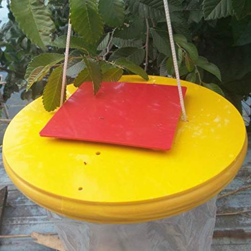 certainPL Red Trap Top The Ultimate Insect Killer Lawn
