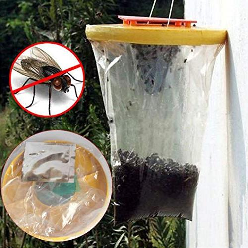 certainPL Red Trap Top The Ultimate Fly Insect Lawn
