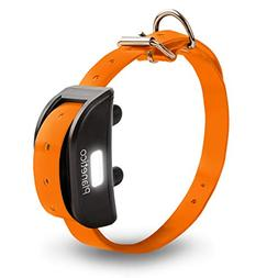 Shock Collar for Dog: Extra Receiver Only with Belt Collar,
