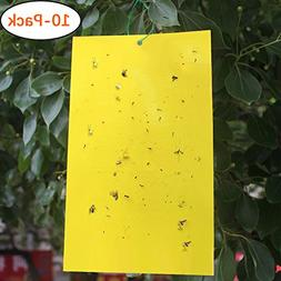 yellow dual sided fly traps